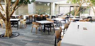 lincoln north cafeteria 1